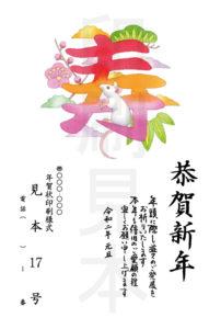 2020年 松本印刷 年賀状見本 17号
