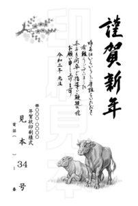 2021年 松本印刷 年賀状見本34号